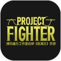 Project:Fighter(航海王手游)